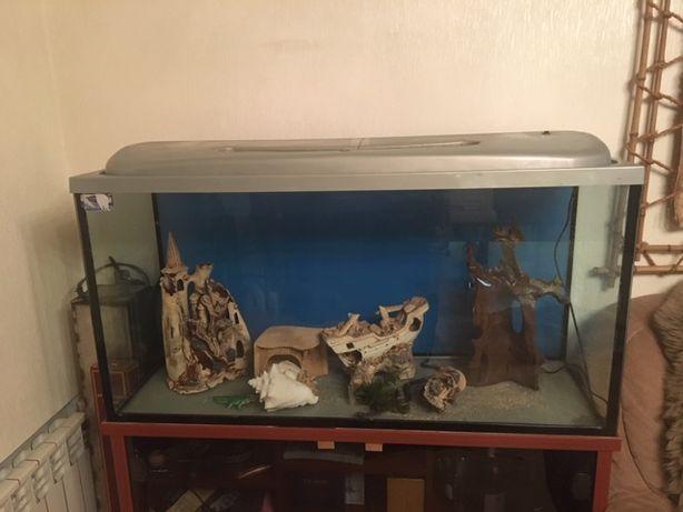 Продам аквариум на 300л с оборудованием
