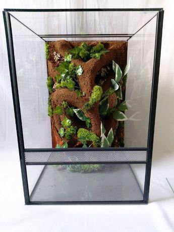 nowe terrarium pionowe z wystrojem wąż żaba gekon orzęsiony wij pająk
