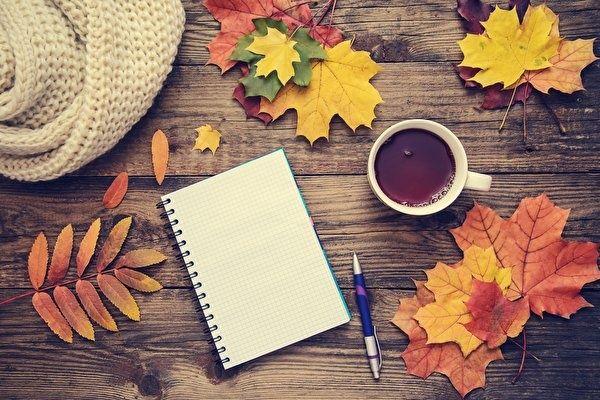 Пишу якісно, швидко і недорого реферати, твори з будь-яких тем!