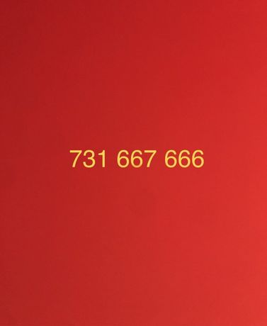 Złoty numer 731*66X*666 Platynowy Łódź