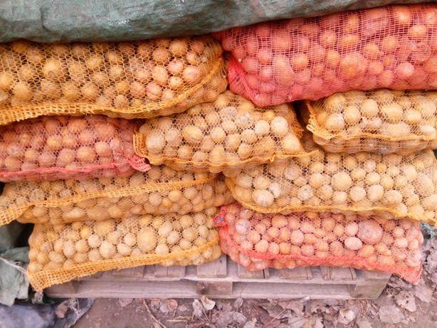 Ziemniaki paszowe / odpadowe