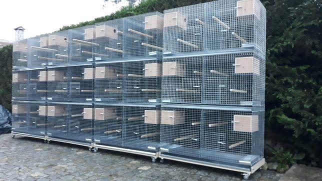 blocos de gaiolas para bicos curvos