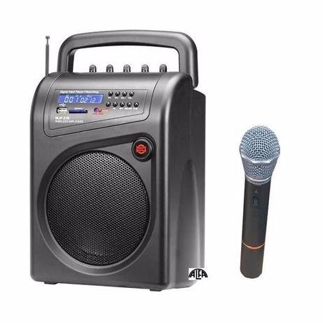 Nagłośnienie mobilne Sekaku Show WJP-21R mikrofon, USB, SD, akumulator