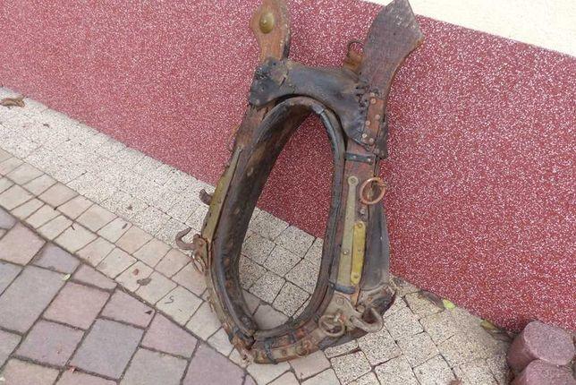 homonto humonto dla konia antyk