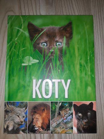 """Książka ,,Koty """""""