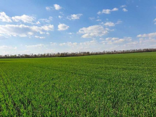 Продається земельна ділянка 28400 сот