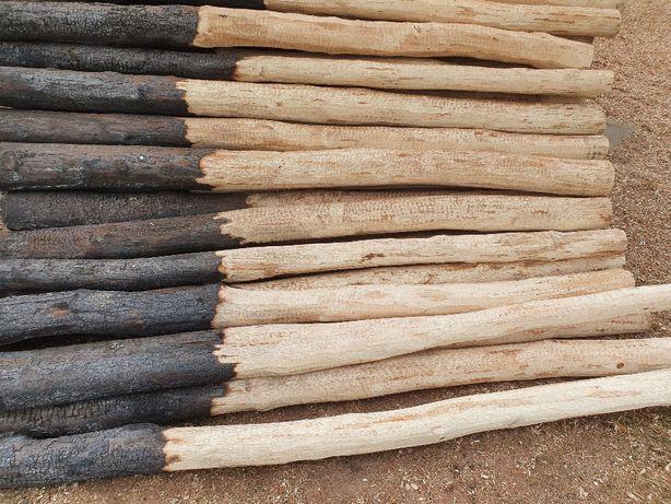 Słupy słupki pale dębowe o średnicy 20-25cm 35zł/mb od 1,5-6m