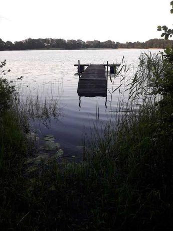 Wydzierżawię działkę nad Jeziorem Salińskim 800m2
