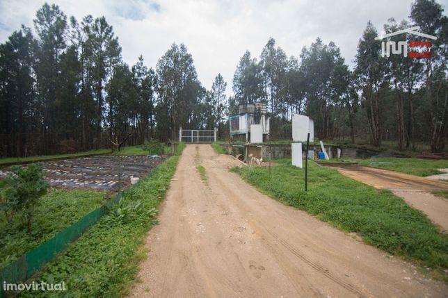 Quinta com aviário em Rio de Couros