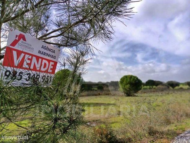Terreno com Vista para Campo de Golf