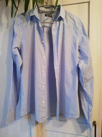 Koszula męska błękitna w kratkę