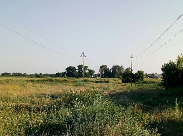 Продаётся 7 Га под строительство в с. Малая Старица (20 км Борисполь)