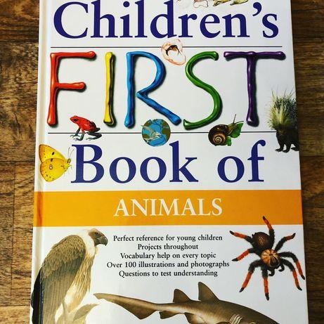 Книга на английском энциклопедия животные