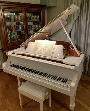Fortepian Euterpe made for Bechstein