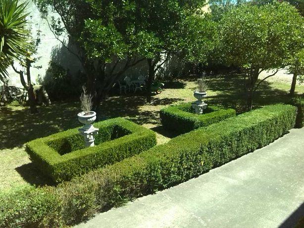 Permuto propriedade em Quintas Aveiro