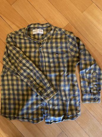 Lote camisas de menino zara 5anos