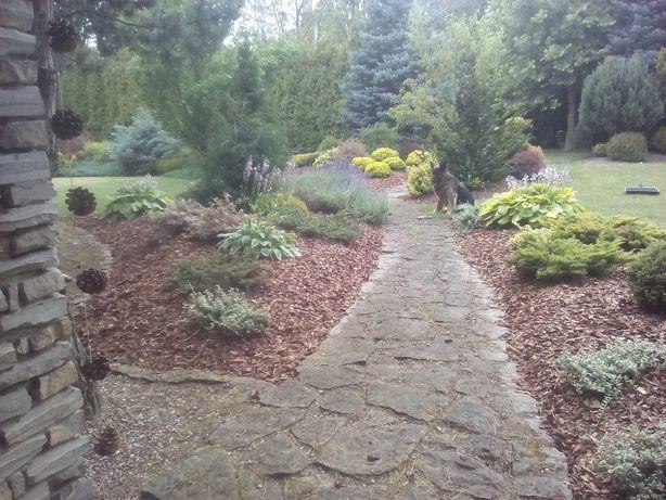 Trawa z rolki, systemy nawadniania, kompleksowe wykonanie ogrodu.