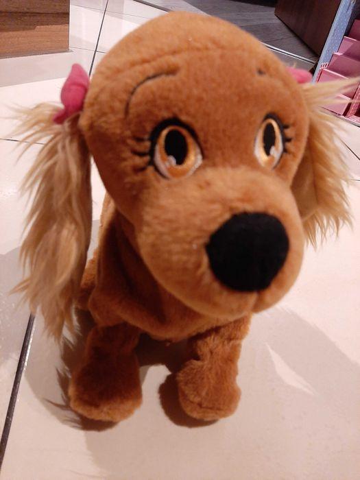 Pies interaktywny Łask - image 1