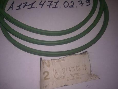 Уплотнительное кольцо топливного фильтра А 1714710279