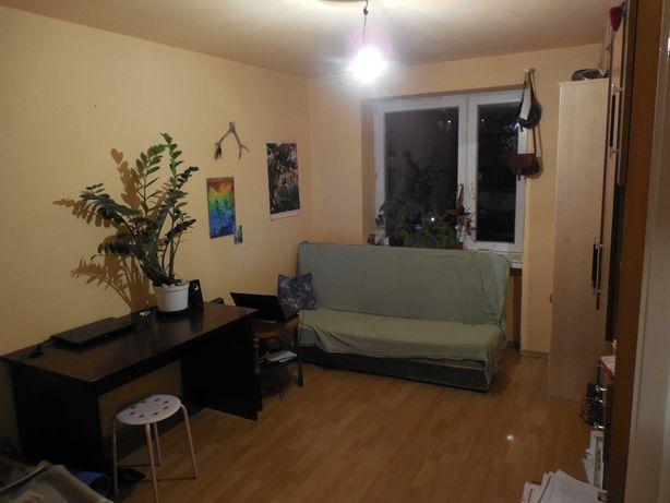 Prusa/Plac Bema  blisko Pl. Grunwaldzkiego ładny pokój do wynajęcia
