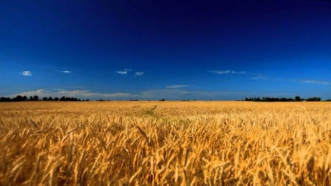 Продажа земли в крыму 480000р. 380955140653