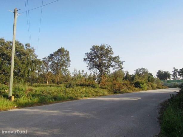 Terreno em zona industrial em Pinhal de Frades