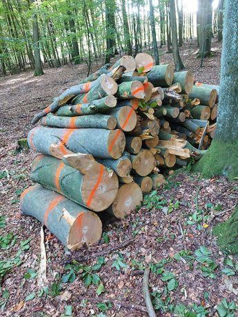 Sprzedam Drewno Buk
