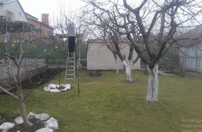 Обрезка, кронирование деревьев и кустарников