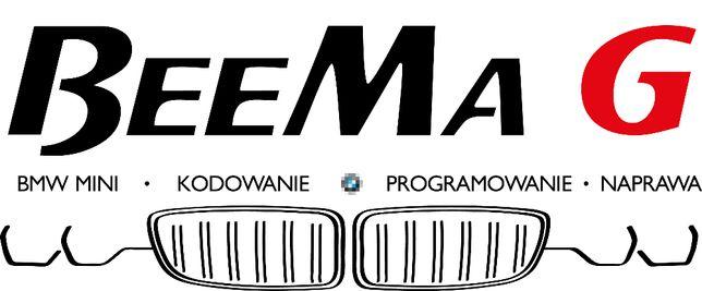 BMW MINI Kodowanie Konwersja USA Język Polski Serwis Mapy Aktualizacja