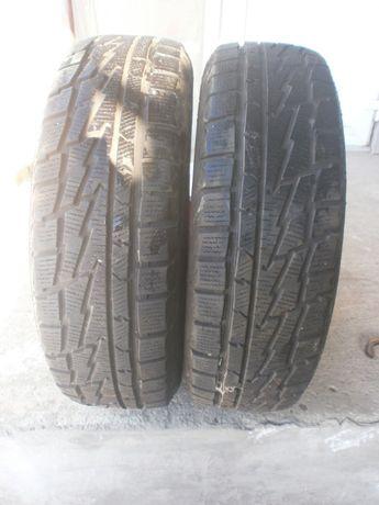 Зимние шины Premiorri