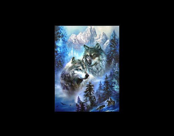 Diamond painting wilki