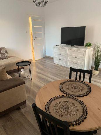 WYnajmę mieszkanie 54 m2, po generalnym remoncie !