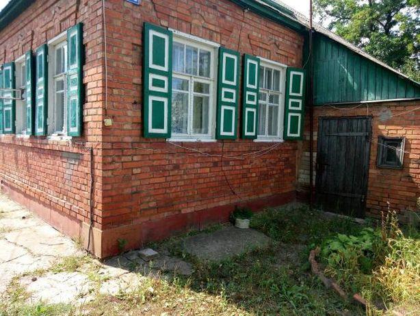 Продам дом в Шелкоплясах