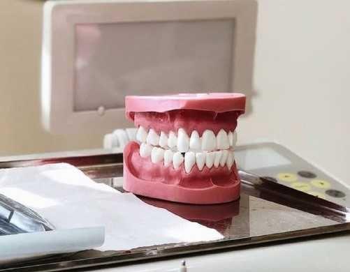 Зубні моделі   Демонстрационная учебная модель верхних и нижних зубов