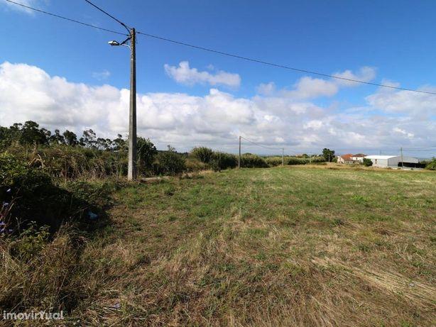 Moradia T2 e anexos em terreno de 3642 m2