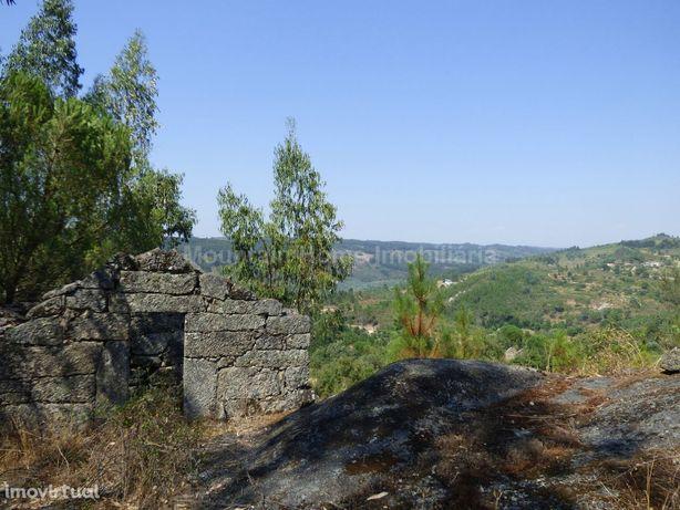 Quintinha  Venda em Ervedal e Vila Franca da Beira,Oliveira do Hospita