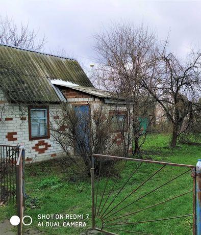 Продается в Чернигове в р-не Киенки приватизированная дача
