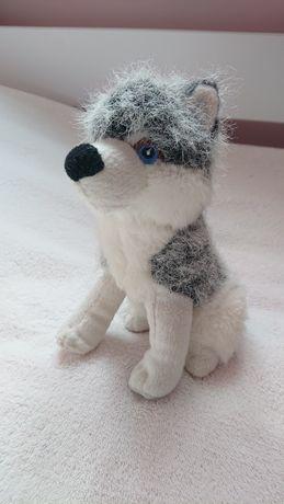 Pies maskotka- szczeka