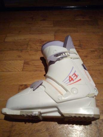 Buty narciarskie Salomon rozmiar 26 początkujący