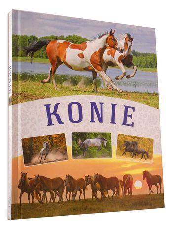 Konie  album 2810