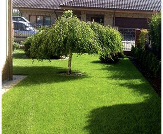 Trawa z rolki - Trawnik PREMIUM-DOSTĘPNA- Bielsko Biala