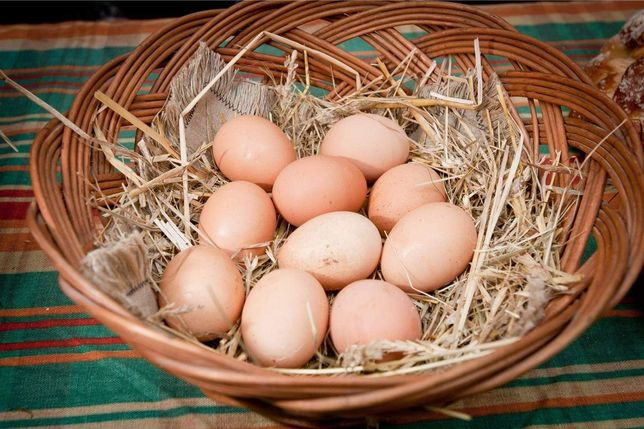 Sprzedam jajka swojskie nawiąże współpracę na większe ilości