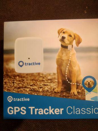 GPS dla psa lub kota