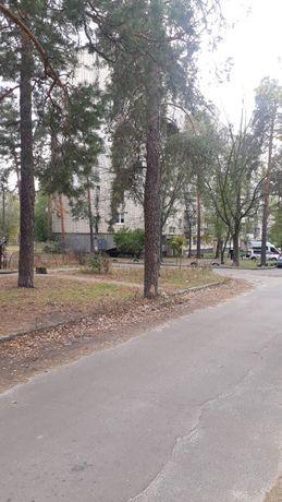 участок у леса и озера ул. Литинская, ДВРЗ