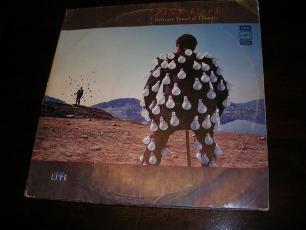 Pink Floyd Delicate Sound Of Thunder 2LP
