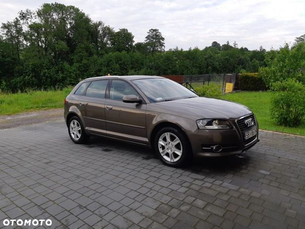 Audi A3 Audi a3 8p 1.6 TDI 105 KM sportback lift model2011