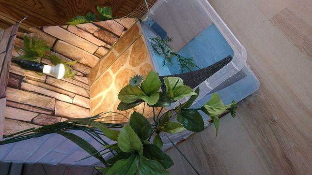 Terrarium, akwarium dla żółwia, żółwi