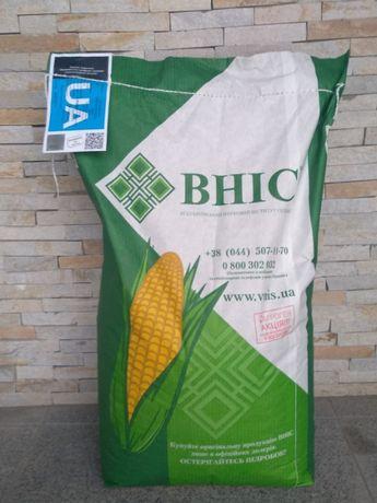 Насіння кукурудзи гібрид, семена кукурузы гибрид ВН 6763 ФАО -320
