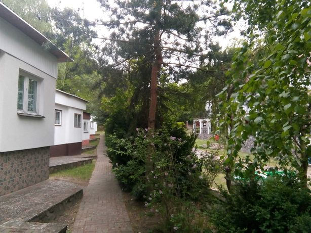 Domki i pokoje nad jeziorem w Łagowie przy samym lesie.