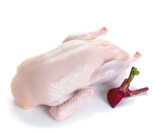 Świeże tuszki kaczek